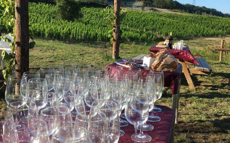 Azienda Agricola RoccaVinealis - Roccavignale Savona - Coltivazione di Granaccia - Vino Rosso della Liguria