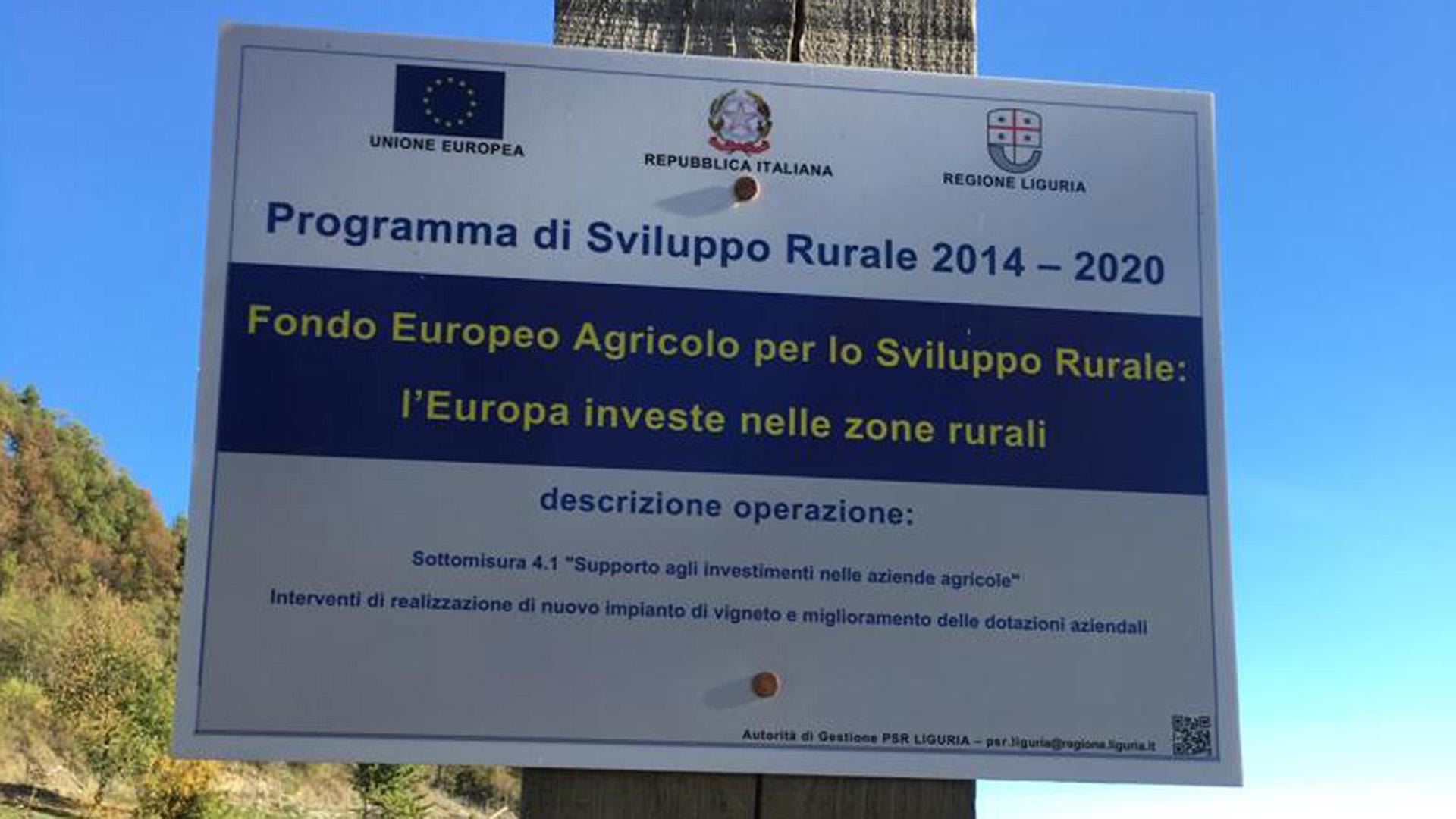 Azienda Agricola RoccaVinealis - Fondo Europero Agricolo Sviluppo Rurale